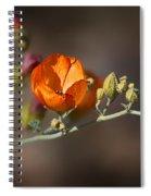Globemallow Spiral Notebook