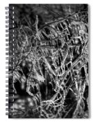 Gloomy Icy Tree Spiral Notebook