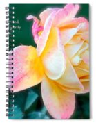 Glorify Spiral Notebook