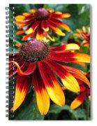 Gloriosa Daisy Waving Spiral Notebook