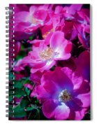 Glorious Blooms Spiral Notebook