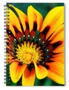 Glorious Day Yellow Flower By Diana Sainz Spiral Notebook