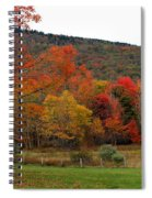 Glorious Fall Leaves Spiral Notebook