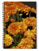 Glorious Golden Mums Spiral Notebook