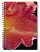 Glorious Lily Spiral Notebook