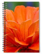 Glorious Orange  Spiral Notebook
