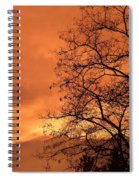 Glorious Silhouettes 1 Spiral Notebook