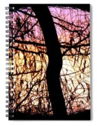 Glorious Silhouettes 3 Spiral Notebook