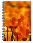 Glory Of Poppies Spiral Notebook
