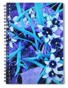 Glory Of The Snow - Violet And Turquoise Spiral Notebook