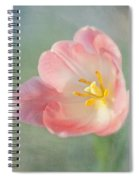 Glow Within-pink Tulip Spiral Notebook