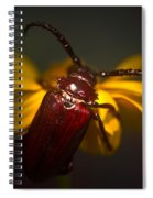 Glowing Beetle Spiral Notebook