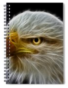 Glowing Eagle Spiral Notebook
