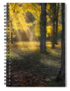 Glowing Maples Square Spiral Notebook