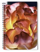 Glowing Rose Spiral Notebook