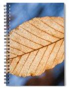 Glowing Venation Spiral Notebook