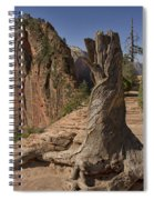 Gnarled Trunk Spiral Notebook