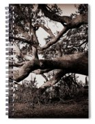Gnarly Limbs At The Ashley River In Charleston Spiral Notebook