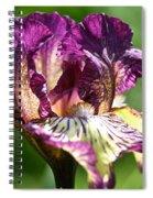 Gnu Rays Spiral Notebook