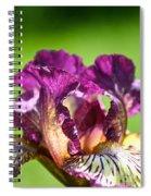 Gnu You Spiral Notebook