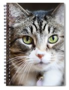 Go Ahead Make My Day Spiral Notebook