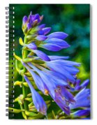 Go With The Flow - Paint Spiral Notebook