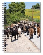 Goat Herd Spiral Notebook