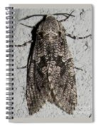 Goat Moth Spiral Notebook