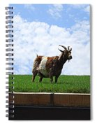 Goat On A Sod Roof In Sister Bay In Wisconsin Spiral Notebook