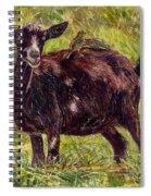 Goat Piggybackers Spiral Notebook
