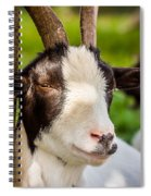 Goat Portrait Spiral Notebook