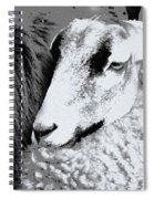 Goat Snuggled In With Family Spiral Notebook