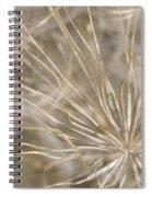 Goatsbeard Spiral Notebook