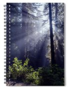 God Rays Through The Fog Spiral Notebook
