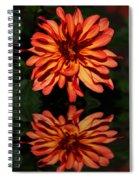 Godess Reflected Spiral Notebook