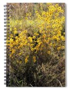 God's Golden Bouquet In Autumn Spiral Notebook
