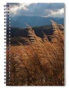Gods Paintbrush IIi Spiral Notebook