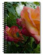 God's Roses Spiral Notebook