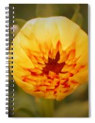 Godsend Sunshine Spiral Notebook