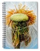 Going Bald Spiral Notebook
