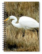 Going Fishing Spiral Notebook