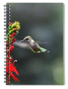 Going In For Seconds Spiral Notebook