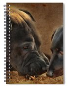 Going Nose To Nose Spiral Notebook