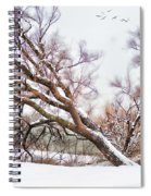 Going Softly Into Winter Spiral Notebook