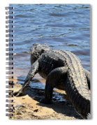 Going To Cool Off Spiral Notebook