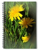 Gold And Green Spiral Notebook