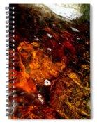Gold And Myrrh Spiral Notebook