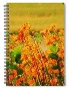 Gold And Orange Landscape Spiral Notebook
