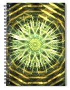 Gold Bullion Spiral Notebook