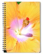 Gold Hibiscus Spiral Notebook